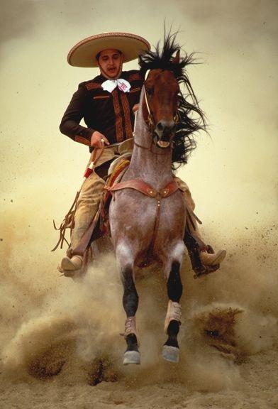 El Caballo Y La Charrer 237 A Parte De La Tradici 243 N Mexicana