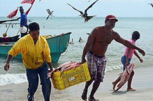 Pescadores artesanales en Farallón, en la costa Pacífica. (Foto la cabanga.com).